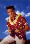 elvis_blue_hawaii